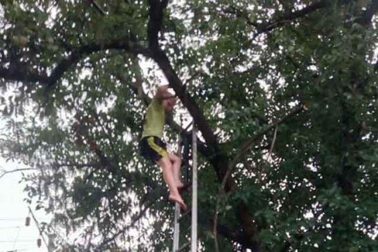Врятували дитину, яка застрягла на дереві