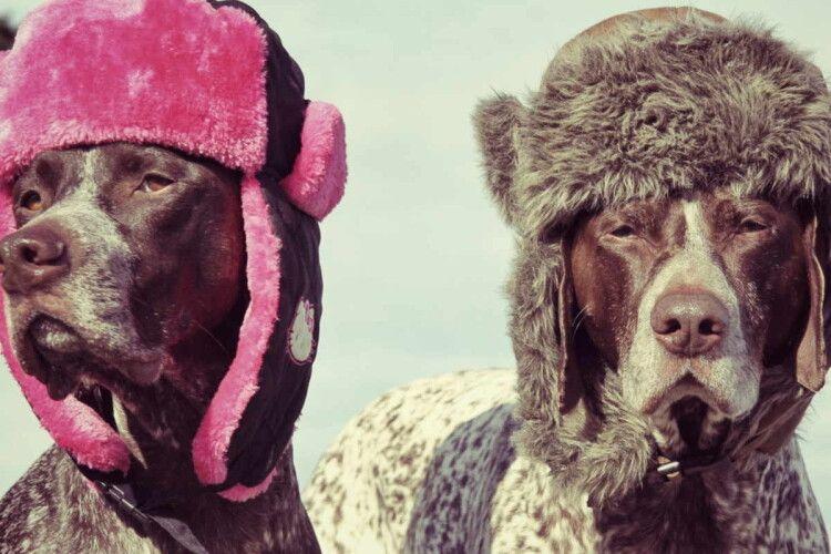 Погода на четвер, 18 лютого: мороз цього дня віщує привітну весну та сухе і спекотне літо