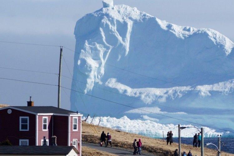 До берегів Канади приплив айсберг-гігант (фото)