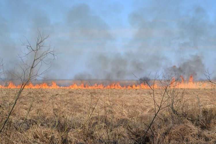 За минулий тиждень волинські рятувальники ліквідували 12 пожеж