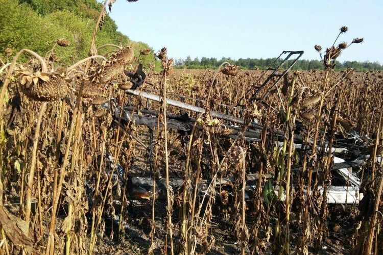 Легкомоторний літак впав у соняшникове поле: пілот загинув