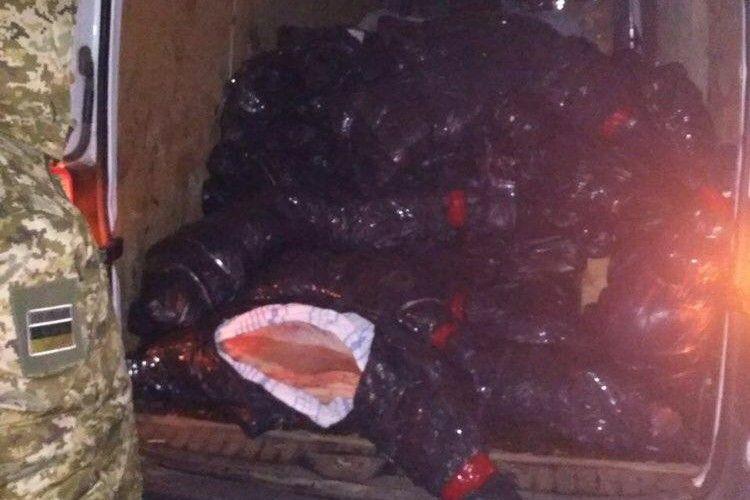 Прикордонники затримали мікроавтобус з 3,3 тоннами телячих туш, які планували переправити до Білорусі