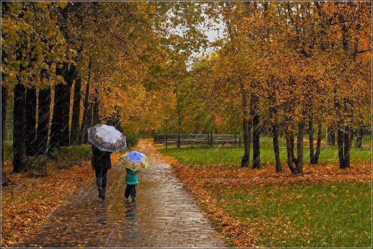 Погода на вівторок, 12 жовтня: на Волині трохи дощитиме