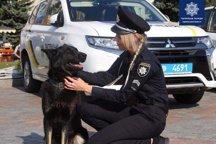 Поліція Рівненщини закликає любити собак і скаржитися на догхантерів