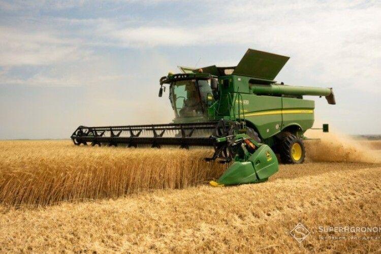 В окремих господарствах Хмельниччини врожайність озимої пшениці сягає 80-85 ц/га