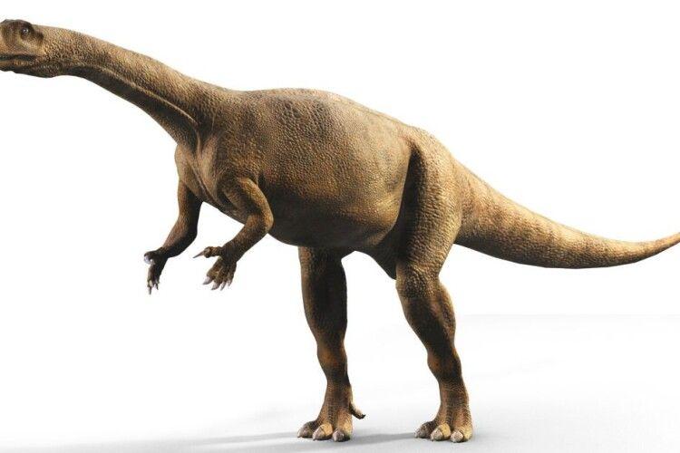 Виявили динозаврів, які росли, як дерева