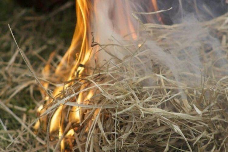 На Рівненщині жінка згоріла у копиці сіна
