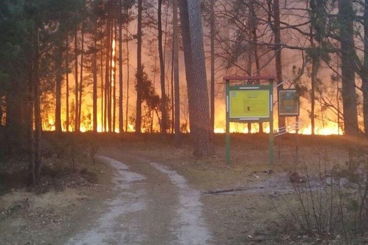 Сильна пожежа зіпсувала свято Великодня у Любомльському районі (Відео)