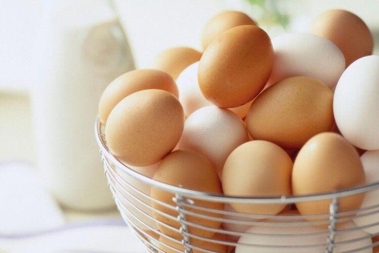 В Україні суттєво скоротилося виробництво яєць