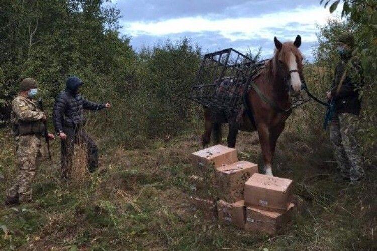 Чоловік конем намагався переправити з Росії до України контрабанду тютюну