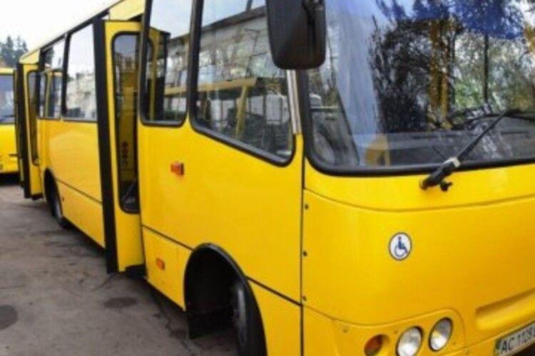 На луцькому маршруті збільшили кількість автобусів