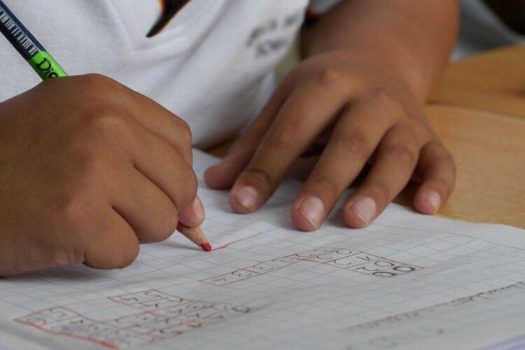 У Зеленського вимагають платити батькам, якщо дитина вчиться вдома