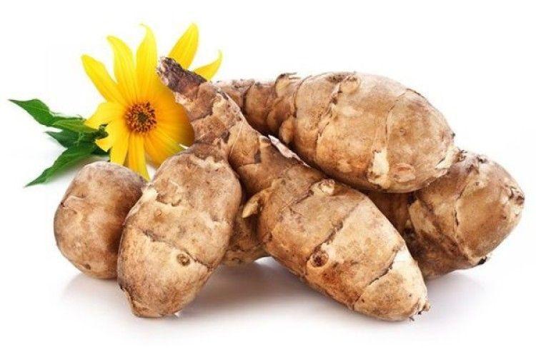 Замість картоплі зішкварками— земляна груша