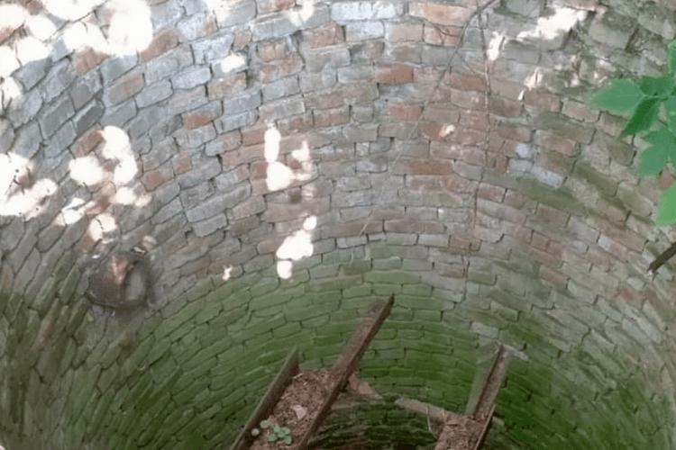Як на Рівненщині рятувальники витягували чотирилапого жителя області із закинутого колодязя (Фото)