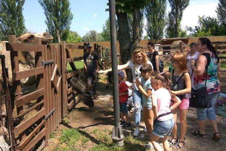 Діти з особливими потребами відвідали «Луцький зоопарк»