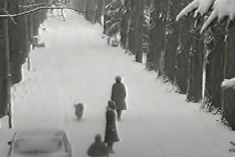 Лучанам показали зиму в центральному парку 1998-го року (Відео)
