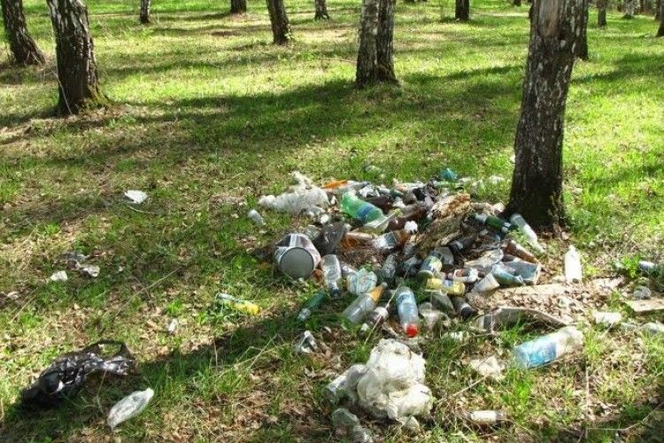 У Цуманській ОТГ за вивезення сміття до лісу чи в поле штрафуватимуть