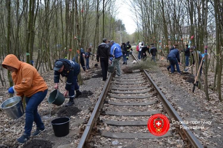 Рівненські пожежники прибрали «Тунель кохання» (фото)