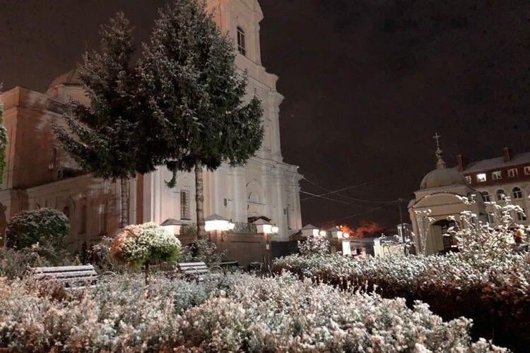 Білі мухи налетіли: показали засніжений собор Святої Трійці у Луцьку
