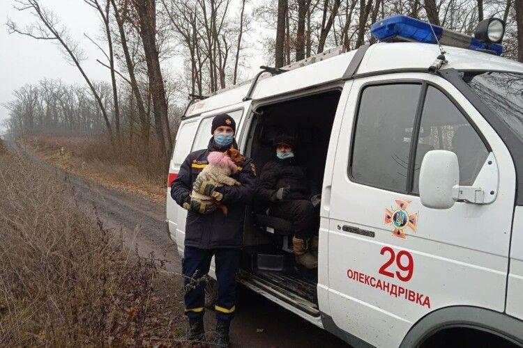 Рятувальники, кінологи та лісники майже добу шукали в лісі даму із собачкою (Фото)