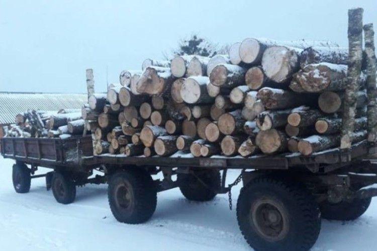 Поліція оперативно виявила крадіїв лісу