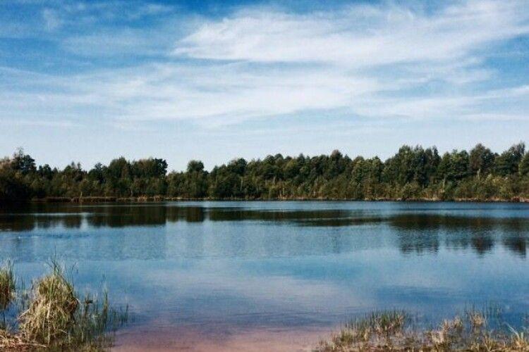 Три шацькі екологічні проєкти перемогли в конкурсі ідей, які фінансуватиме Німеччина