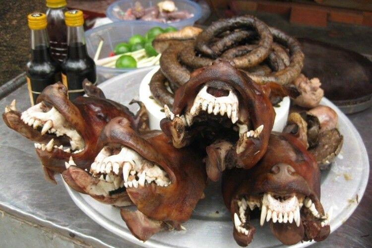 Президент Південної Кореї висловився за заборону споживання собачатини