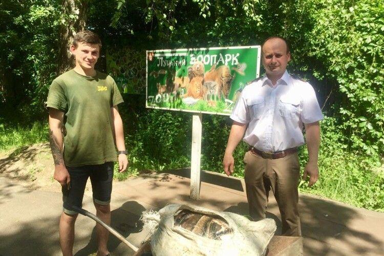 Луцькому зоопарку передали 60 кг вилученої у браконьєрів риби (Фото)