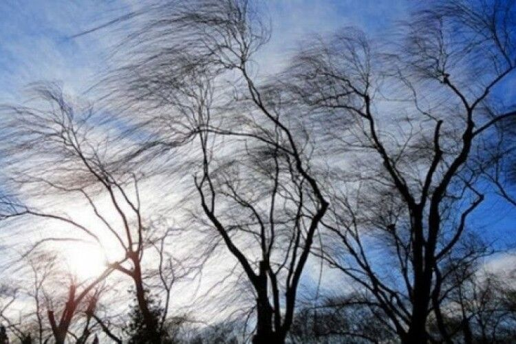 Погода на вівторок, 8 грудня: трохи морозу і поривчастий південно-східний вітер