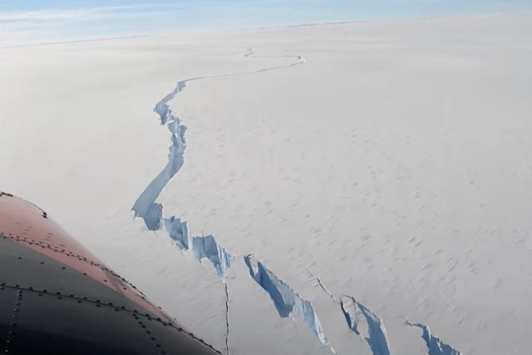 Від Антарктиди відколовся гігантський айсберг, більший за площу колишнього Горохівського району Волинської області (Відео)