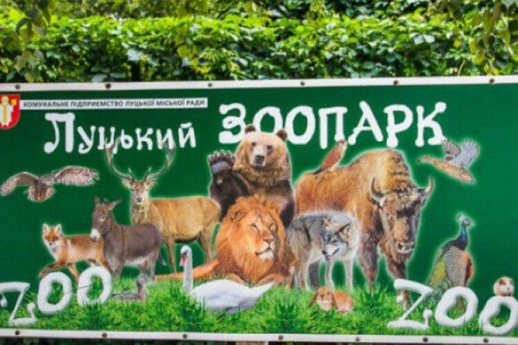 «Привіз на велосипеді 50 гривень»: як Луцький зоопарк виживає у карантин