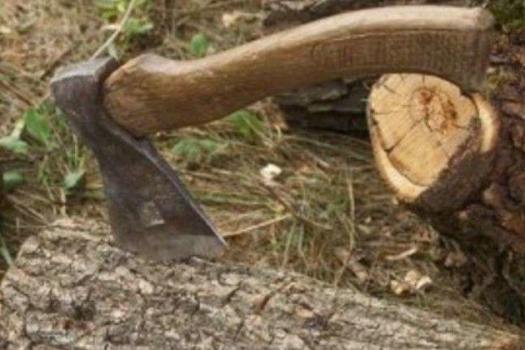Волинянин зрізав та зрубав … 27 дерев
