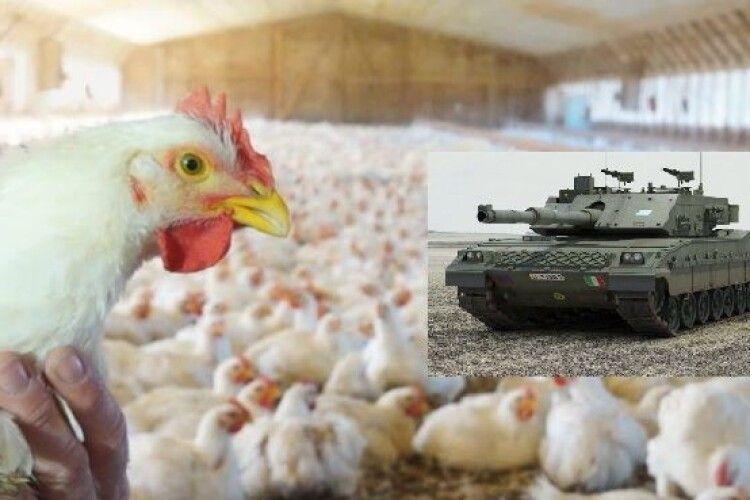 Танк помилково обстріляв курячу ферму