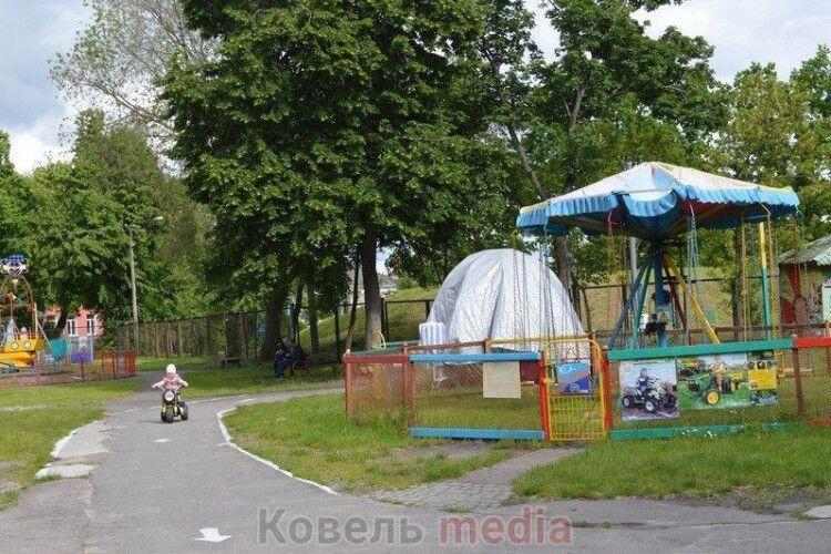 У центральному парку волинського міста під бензопилу підуть понад 20 дерев