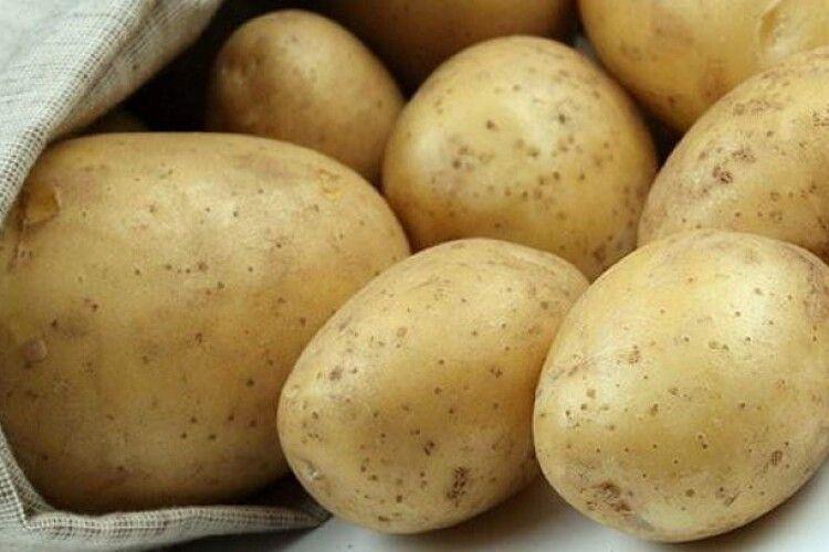 Виконком Луцької міськради постановив оштрафувати на 340 гривень дядька, який продавав півтора відра картоплі