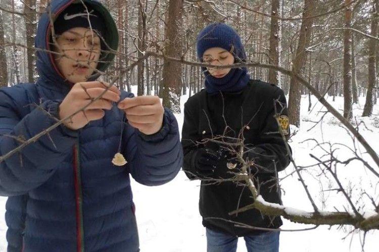 Дітлахи подбали, щоб птахам легше зимувалося