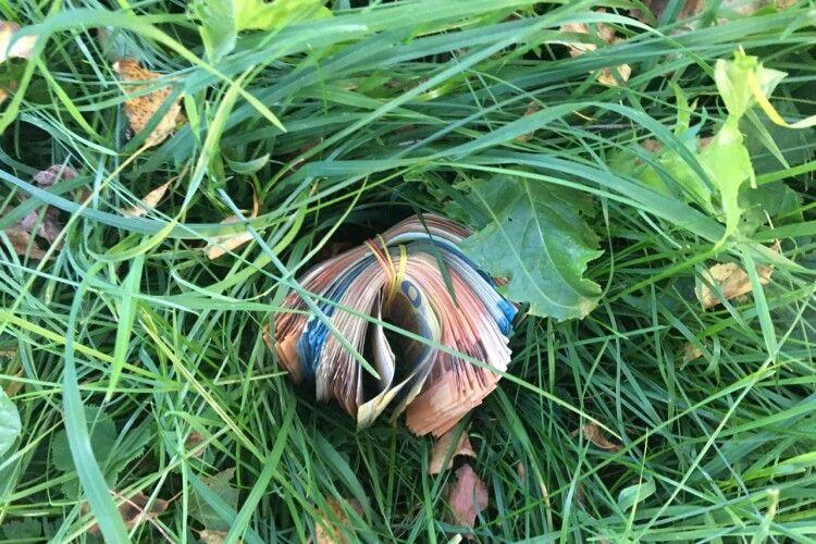 Понад 9 000 євро валялися в траві біля українського кордону