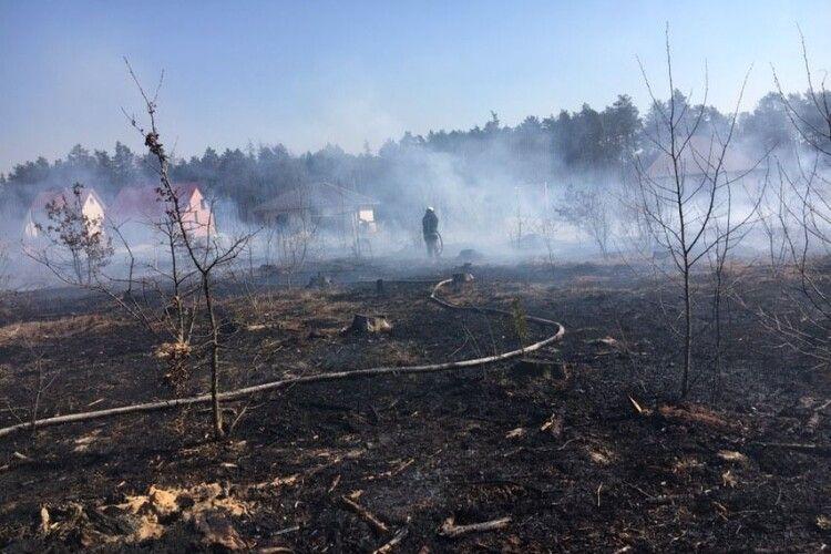 На Волині разом із сухою травою згоріли дві дачі (фото)