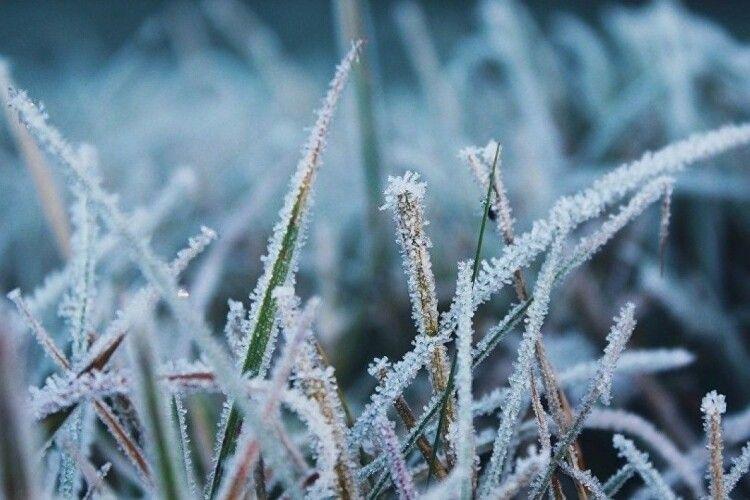 На українців чекають сильні заморозки