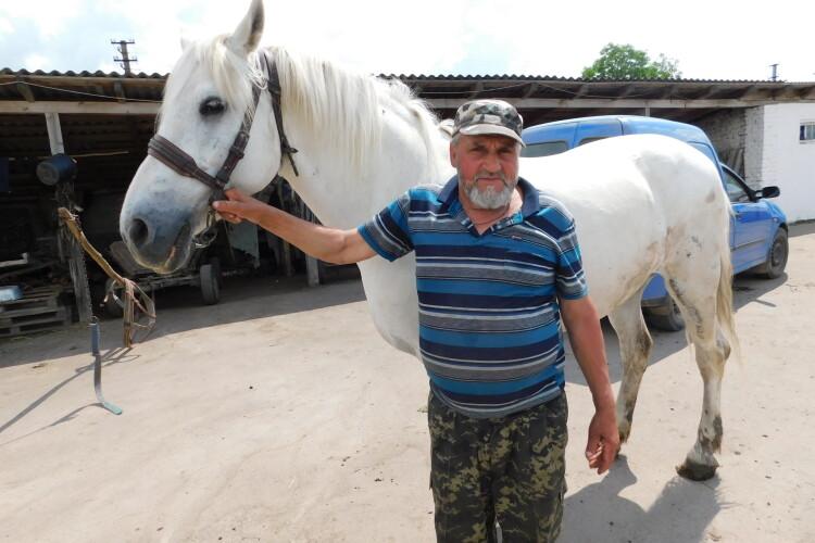 Фото на згадку: волинянин, який доглядає 7 коней