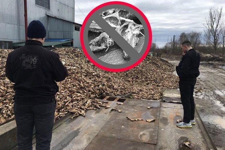Чи покарають директора ковельського підприємства за забруднення довкілля