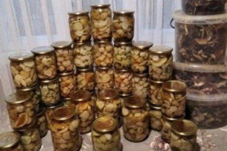 Волинянка за вересень намаринувала півсотні банок білих грибів, а насушила – кілька відер
