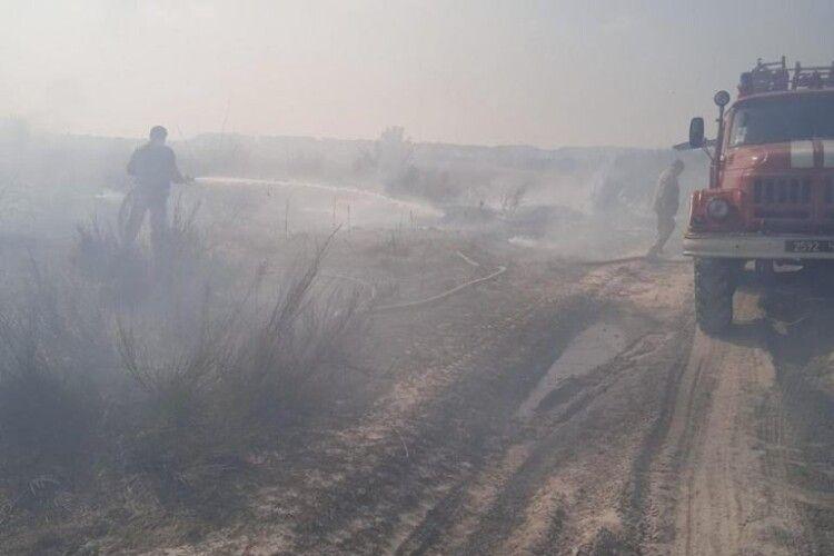 На Волині горіли землі запасу (Фото)