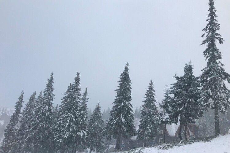 На Закарпатті намело 10 сантиметрів снігу (Фото)