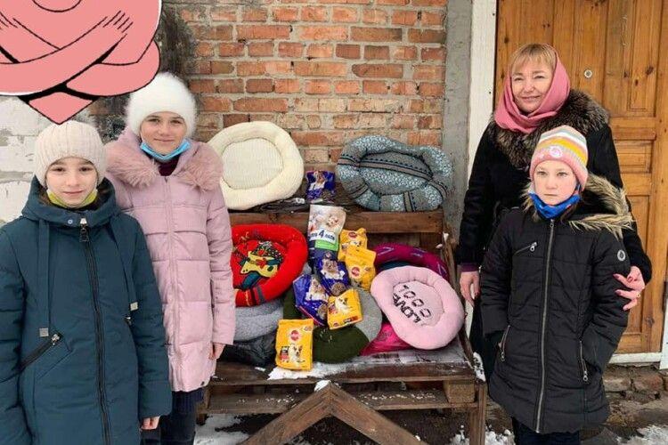 Волинські школярі подарували котикам і собачкам лежаки та смаколики