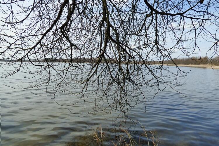 Яке на вигляд і чим цікаве шацьке озеро Чорне (Фото)