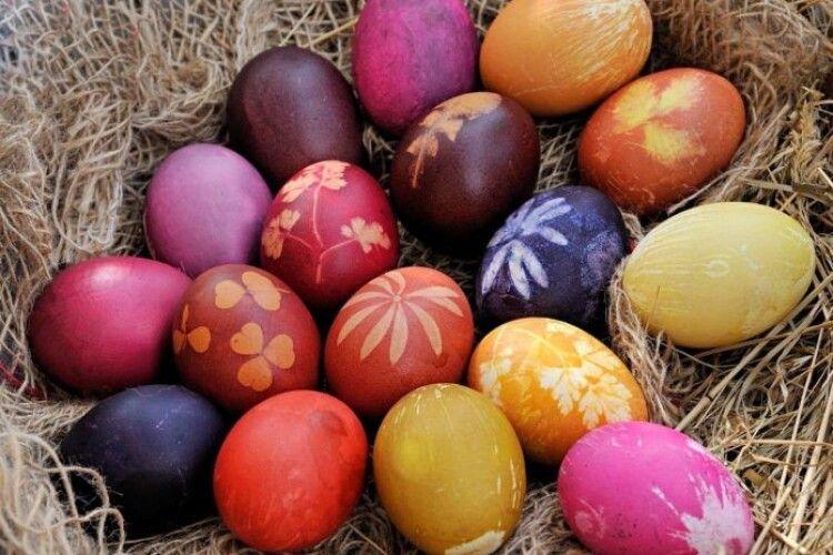 Перед Великоднем на українців чекає «фокус»: курячі яйця стануть «золотими»