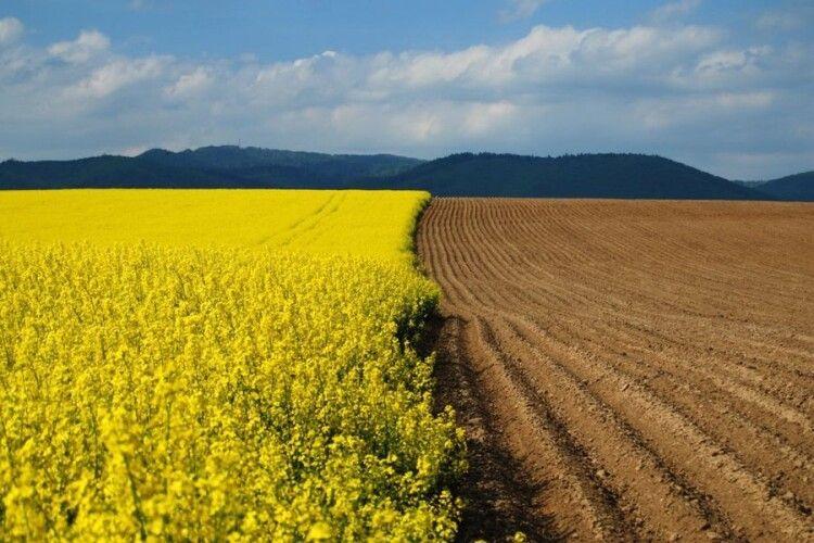 На Волині є понад 1 млн га земель сільськогосподарського призначення
