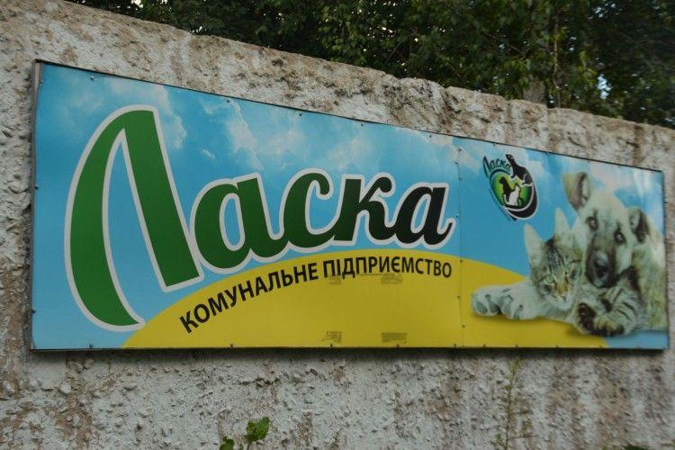 Директорка «Ласки» розповіла, чому в Луцьку немає сказу