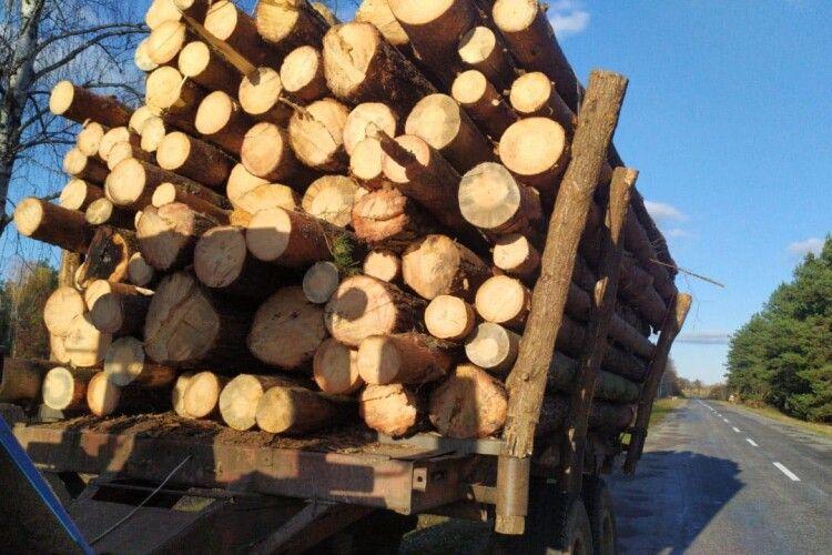 На Волині на гарячому спіймали два трактори завантажені нелегальною деревиною (Фото)